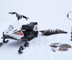 Снегоход Рыбинка